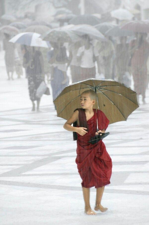 rainmonk